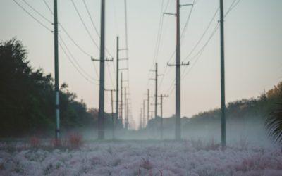 Defraudaciones de luz, agua, gas, telecomunicaciones…